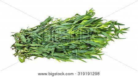 Bunch Of Fresh Tarragon (estragon) Isolated On White Background