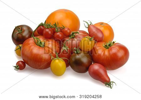 Tomatoes Of Different Varieties. Assorted. Tomatoes Of Different Colors. On A White Background, Isol