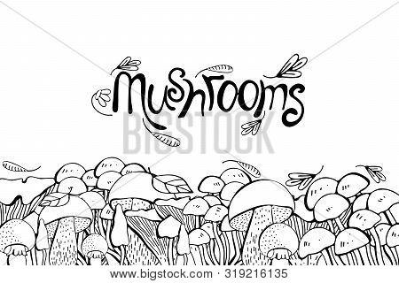 Mushroom Drawing Vector Seamlees Border. Isolated Food Frame Sketch. Champignon, Morel, Truffle, Eno