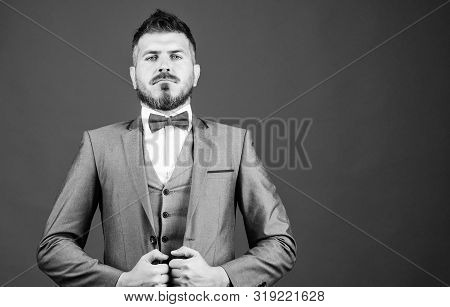 poster of aristocrat. mature illusionist. Bride groom ready for wedding. bearded man in formal suit. esthete. stylish art director. businessman with beard in bow tie. business in modern life. copy space