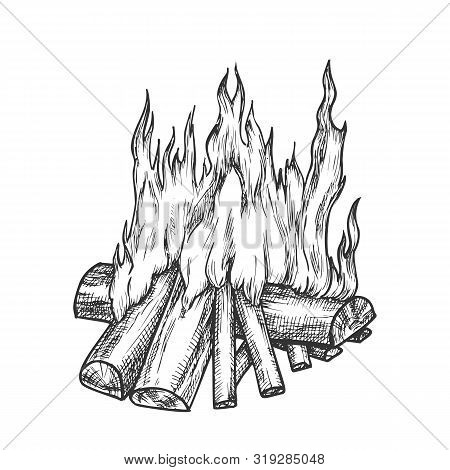 Traditional Burning Firewood Monochrome Vector. Forest Burn Firewood For Warm. Warming Camping Touri