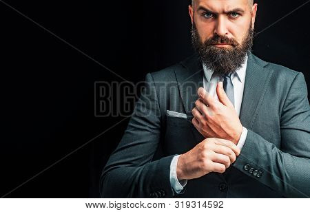 Handsome Man. Man Suit Fashion. Luxury Classic Suits, Vogue. Man In Classic Suit, Shirt And Tie. Ric