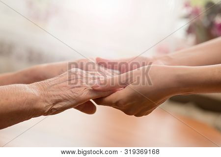 Young And Old Hands Hold Each Other. The Concept Of Love Of A Young And Old Generation Of People. Pe