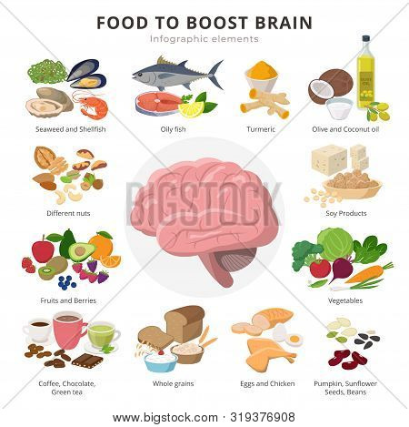 Healthy Food For Brains Infographic Elements In Detailed Flat Design Isolated On White Background. B