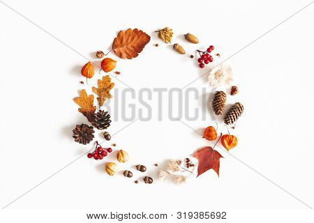 Autumn Composition. Wreath Made Of Dried Leaves, Flowers, Rowan Berries, Pine Cones On White Backgro