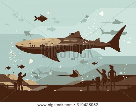 Aquarium With Large Marine Fishes. People Look