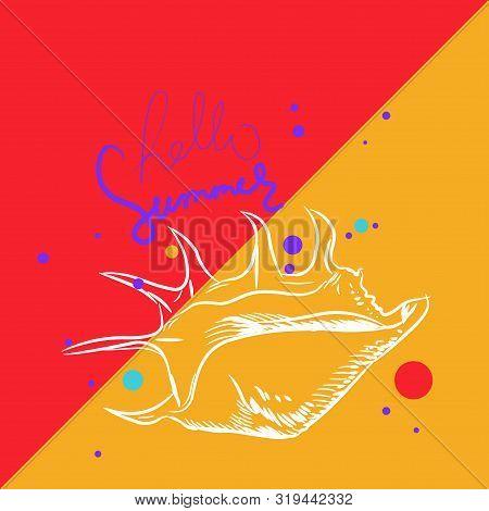 Hello Summer Card Banner. Lambis Spider Conch, Large Sea Snail, A Marine Gastropod Mollusk In The Fa