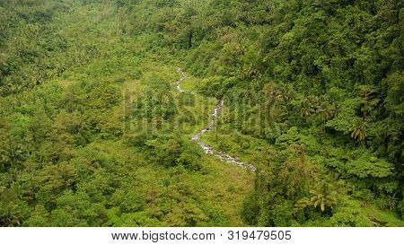 River In The Valley Among The Rainforest, Covered With Trees And Jungle Aerial View. River In The Gr