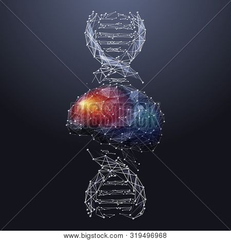 Brain And Dna Spiral Low Poly Wireframe Illustration. Colorful Polygonal Neurons Cells Connections M