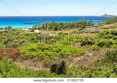 Panoramic View Of Sardinia