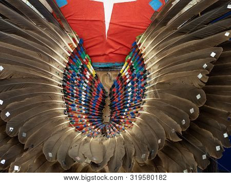 Close Up Of Feather Pow Wow Bustle With Striped Quills