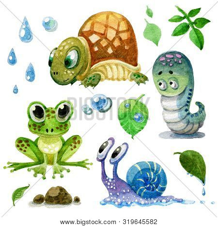 Set Of Cartoon Watercolor Amphibians, Turtles, Snails And Caterpillars