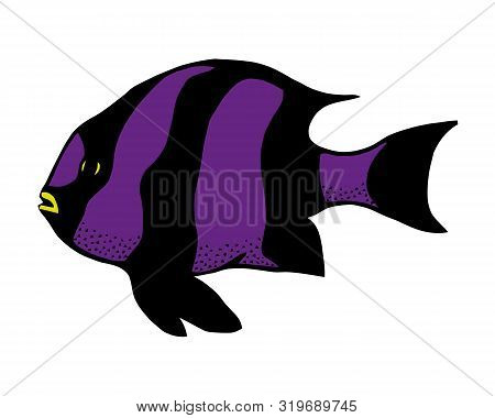 Coral Reef Tropical Fish Vector Illustration. Vector Sea Fish Isolated On White Background. Aquarium