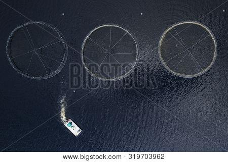Fish Farm Salmon Sea Nets Farming At Sea Loch Tay Scotland Uk
