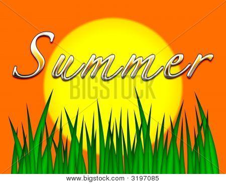 Summer Background Illustration