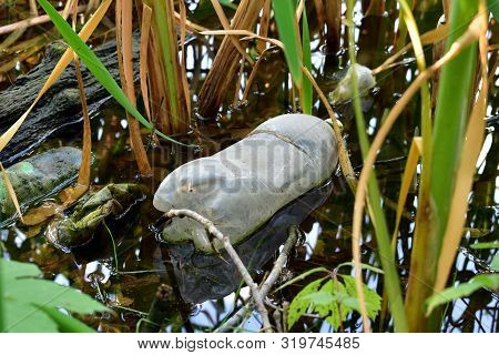 Garbage On The River. Plastic Bottle Thrown Into A River Or Lake On The Shore In The Reeds. The Prob