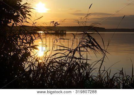 Sunset River Horizon Silhouette Branch Landscape. River Sunset Horizon.