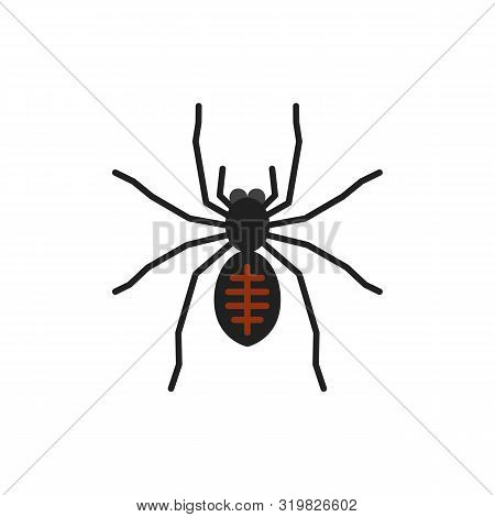 Spider Single Flat Icon. Insect Simple Sign In Cartoon Style. Tarantula Pictogram Wildlife Symbol. E