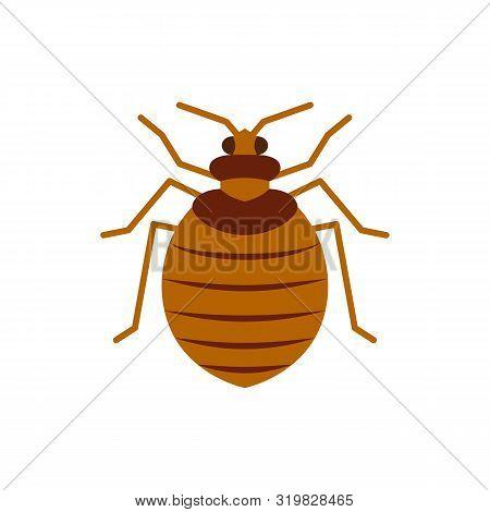 Bedbug Single Flat Icon. Bug Simple Sign, Cartoon Style. Insect Pest Symbol. Wildlife Pictogram. Ent