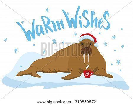 Cute Walrus Flat Color Illustration. Warm Wishes Handlettering Inscription