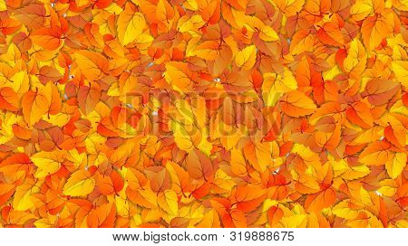 Seamless Autumn Leaves Horizontal Fill Banner. Advertising Template With Golden Autumn Fall Orange L