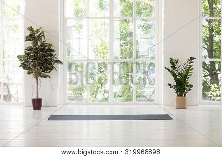 Yoga Studio Interior With Windows, Plants And Unrolled Mat