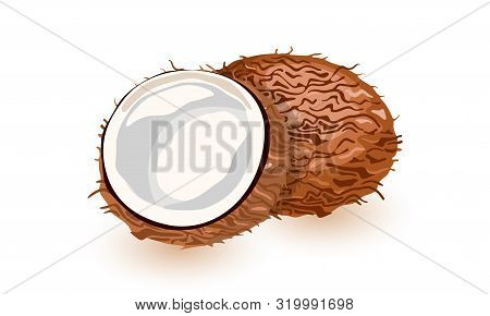 Vector Illustration Of A Coconut Whole, Cracked Into Halves. Food Symbol Collection. Whole Nuts And