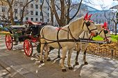 Fiaker horse carriage in Vienna Austria (no people) poster