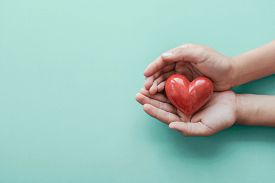 Hands Holding Red Heart On Blue Background, Health Care, Love, Organ Donation, Family Insurance And