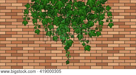 Brick Wall With Ivy Leaves Falling. Green Ivy Foliage On Brown Brick, House Wall Or Fence. Cartoon B