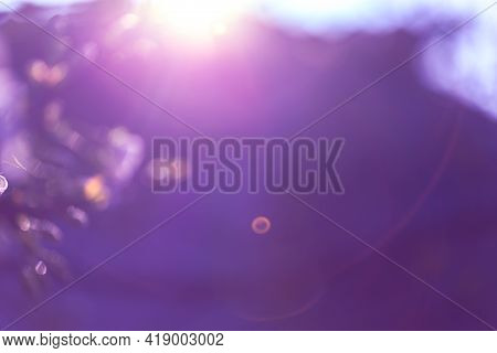 Abstract Bokeh Background Purple Texture, Grunge. Blurred Natural Background. Blurred Image Of Natur