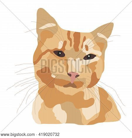 Cute Ginger Cat, Portrait Of A Beautiful Pet. Mammal With A Spotted Color, Large Mustache, Dark Brow