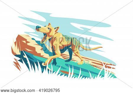 Wild Tasmanian Tiger Animal Vector Illustration. Unique