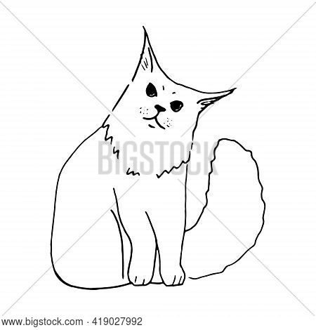 Black And White Cat Hand Drawn Vector Llustration Doodle Sketch. Feline Character Outline Design. Co