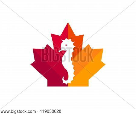 Maple Sea Horse Logo Design. Canadian Sea Horse Logo. Red Maple Leaf With Sea Horse Vector