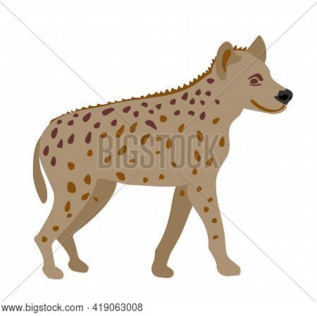 African Spotted Hyena On White Background Illustration. Wild Animal. Engraved Hand Drawn Old Monochr