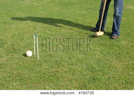 Goal. Achievement. Playing Croquet
