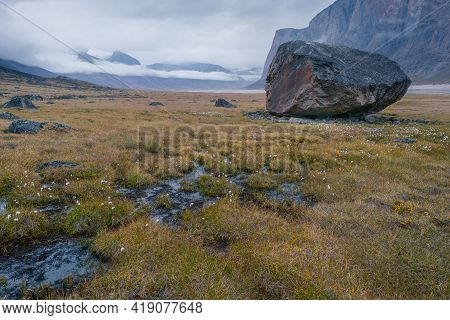 Rainy, Hazy Day In Remote Arctic Valley Of Akshayuk Pass, Baffin Island, Canada. Moss And Grass In A