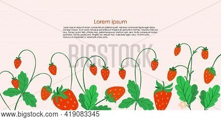 Strawberry Background. Hand Drawn Fresh Forest Or Garden Berry. Whole Juicy Berries Frame Or Border,