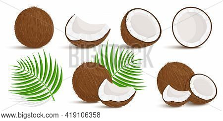 Set Of Exotic Whole, Half, Cut Pieces Of Coconut Fruit And Palm Leaves Isolated On White Background.