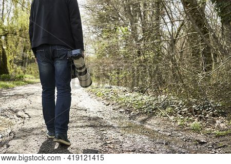 A Man With A Zoom Lens On A Camera In His Hand Is Walking Along A Path Among The Trees. Streams Run