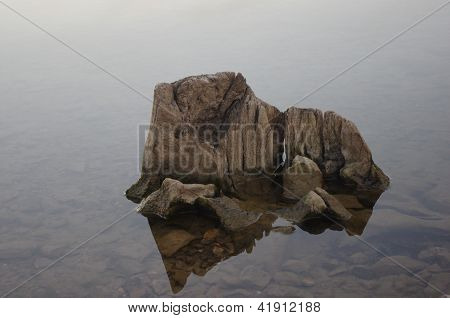 Petrified stump in water