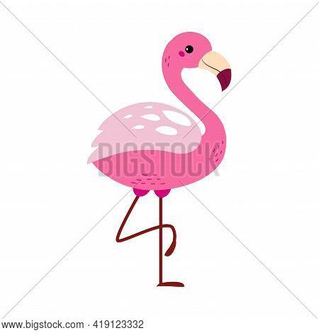 Cute Flamingo Beautiful Bird, Exotic Tropical Fauna Element, African Savanna Inhabitant Cartoon Vect