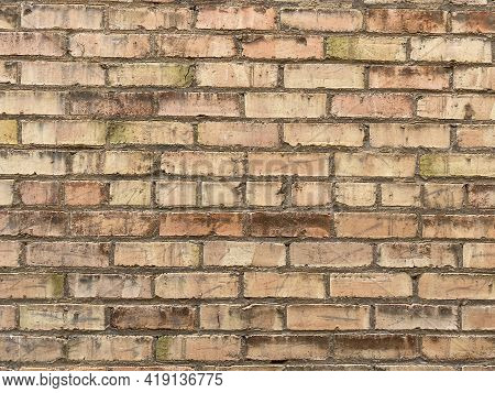 Dirty Grungy Mildew Mold Tan Brick Wall Building Exterior Weathered