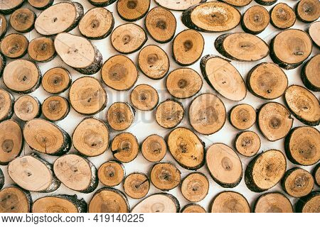 Cross Section Of Tree Trunks Background. Wood Texture, Round Wooden Tree Trunks. Decoration Of Cutti