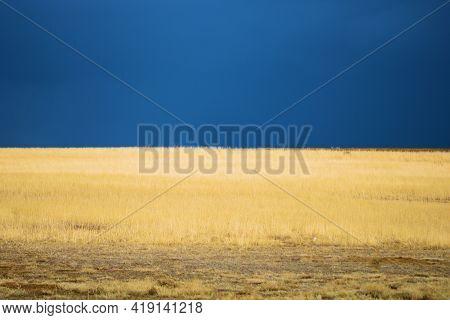 Dark Storm Clouds Over The Horizon With Heavy Rain On A Windswept Prairie With Grasslands Taken At A