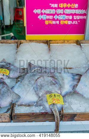 Daecheon, South Korea; April 25, 2021: Ray Fish On Ice For Sale At Seaside Fish Market.