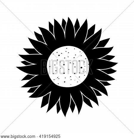 Vector Illustration Of Black Silhouette Of Sunflower Isolated On White Background. Summer Flower Cut