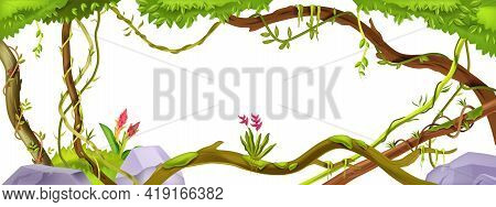 Jungle Liana Branch, Vector Vine Plant Tree Frame, Tropical Vegetation, Botanical Background With Cl