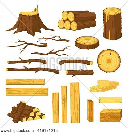 Wood Trunks And Planks. Raw Materials For Lumber Industry, Logs, Stumps, Tree Stubs With Bark And Wo